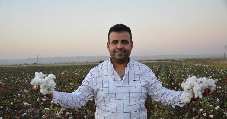 Şanlıurfa'nın Eyyübiye ilçesinde ikamet eden mevsimlik işçi hem Doktor hem de Avukat oldu